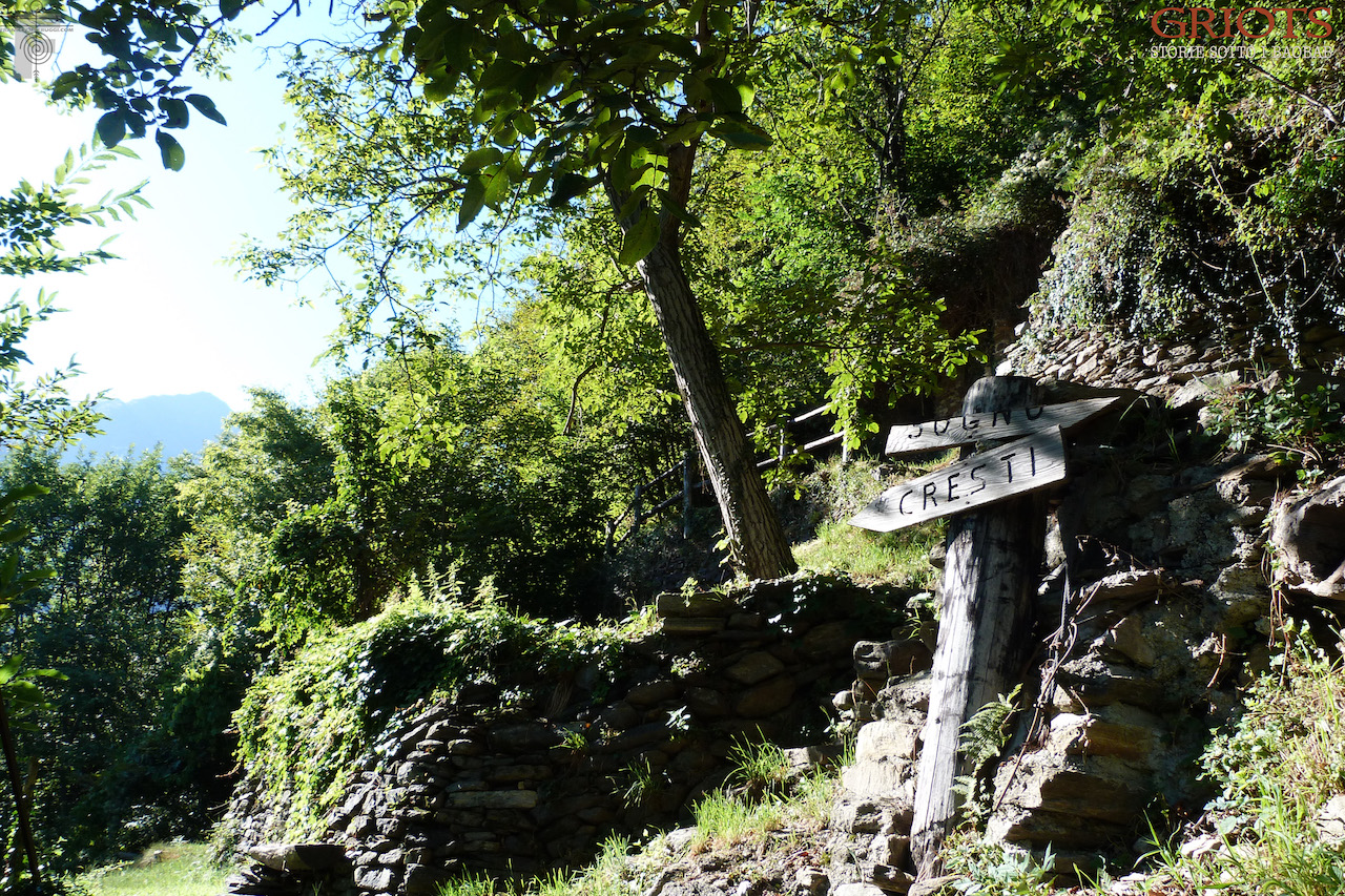 I giardini della gioia di Varchignoli